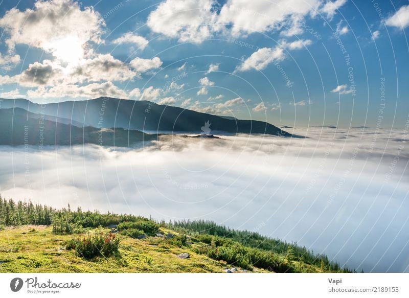 Grüne Berge in den Wolken Himmel Natur Ferien & Urlaub & Reisen Pflanze blau Sommer Farbe schön grün weiß Sonne Baum Landschaft Ferne Wald