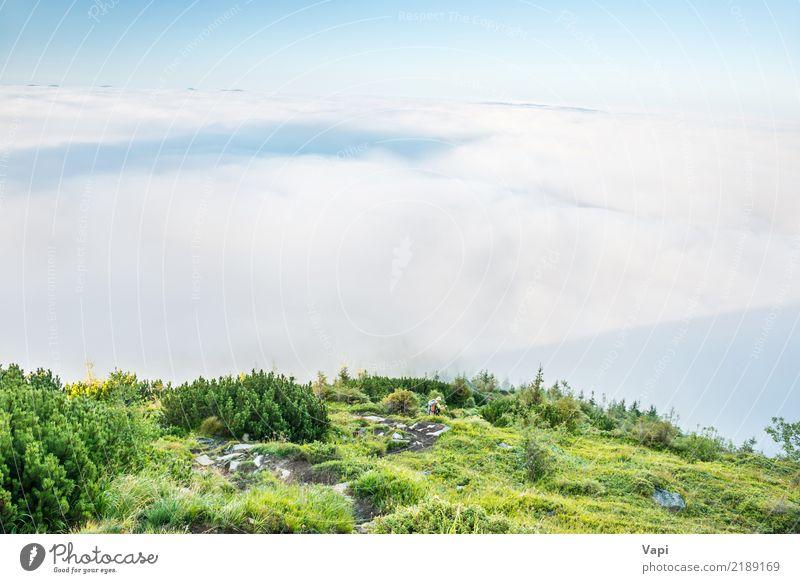 Landschaftsansicht über grüne Hügel im Nebel bei Sonnenuntergang Frau Mensch Himmel Natur Ferien & Urlaub & Reisen Pflanze blau Sommer Farbe weiß Baum Wolken