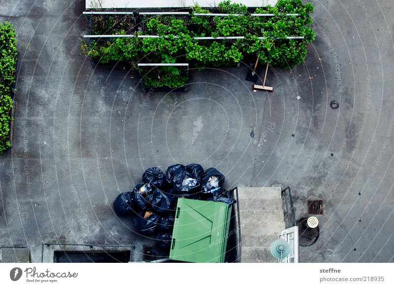 wasted grün Umwelt grau dreckig Sauberkeit Reinigen Müll Recycling ökologisch Müllbehälter Besen Umweltverschmutzung Platz Innenhof verschwenden Blumenbeet
