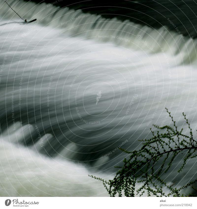 3sam Wasser Gefühle grau Stimmung Umwelt Wassertropfen 3 Fluss Bach Flussufer Wasserfall Umweltschutz Freiburg im Breisgau Langzeitbelichtung