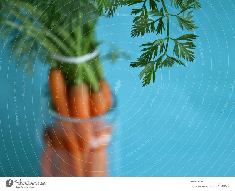 das Grünzeug dazu Lebensmittel Gemüse Ernährung Bioprodukte Diät Gesundheit blau grün Grünpflanze Möhre Blatt lecker Glas Farbfoto Innenaufnahme Unschärfe