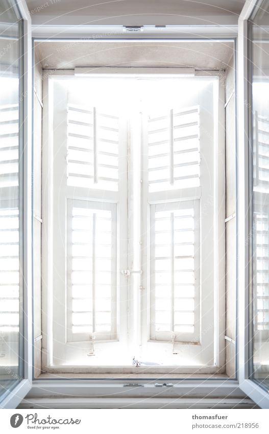 Verlockung weiß Leben Gefühle Fenster Stimmung hell Raum Wohnung Hoffnung Zukunft offen Aussicht Ziel Häusliches Leben Lebensfreude Sehnsucht
