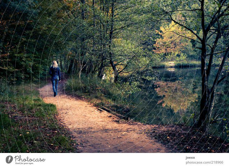 Allein Erholung Frau Erwachsene 1 Mensch Natur Landschaft Herbst Baum Park Wald Seeufer Teich Wege & Pfade gehen retro dünn gelb grün Romantik Gelassenheit