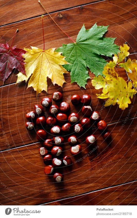 #AS# Herbsttisch Kunst Kunstwerk ästhetisch Kastanienbaum Kastanienblatt herbstlich Herbstlaub Herbstfärbung Herbstwald Herbstwind Tisch Blatt Farbfoto