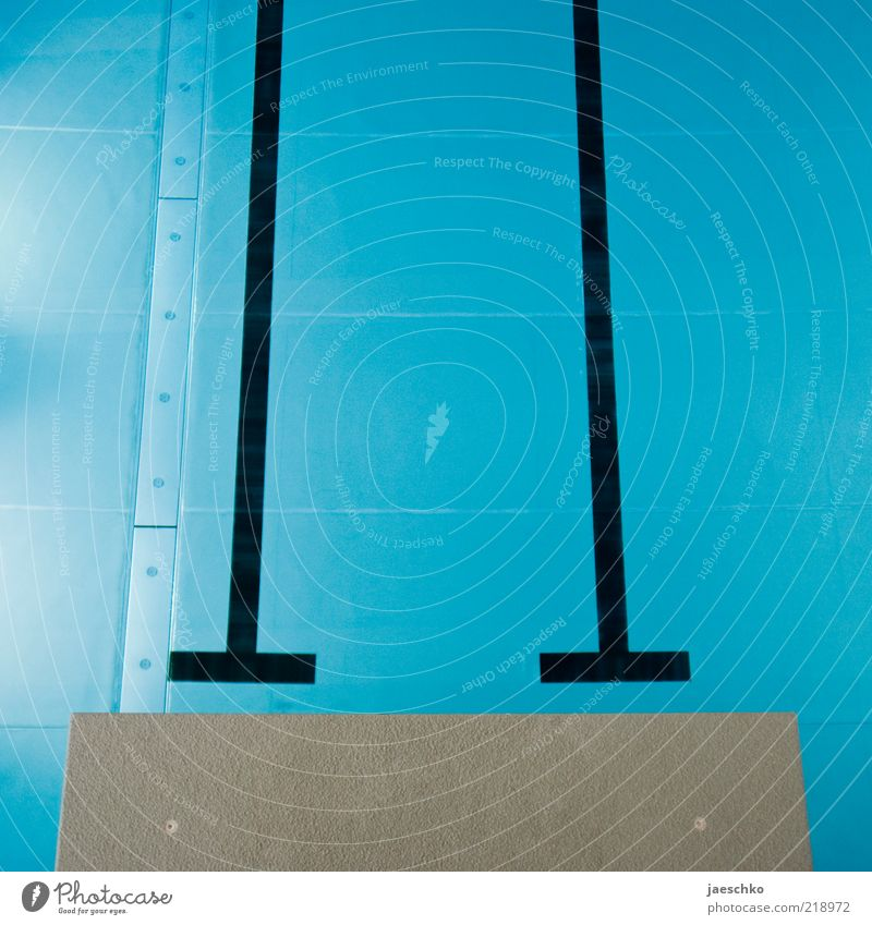 Hopp Sportstätten Schwimmbad kalt blau Linie Sprungbrett Dreimeterbrett Schwimmhalle Wasser Startblock startbereit Startlinie Vogelperspektive ruhig Klarheit