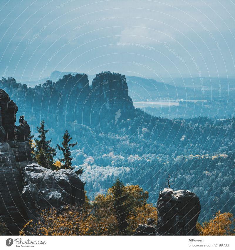 sächsische schweiz Umwelt Natur Landschaft Nebel Felsen Berge u. Gebirge Gipfel Schlucht schön Sächsische Schweiz Wald Herbst Horizont Aussicht