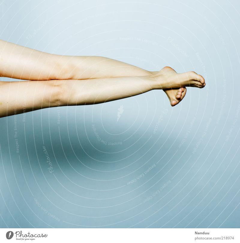 feine Beine elegant Mensch feminin 1 dünn schön verführerisch Frauenbein Knie Fuß Hintergrund neutral Farbfoto Gedeckte Farben Studioaufnahme Textfreiraum unten