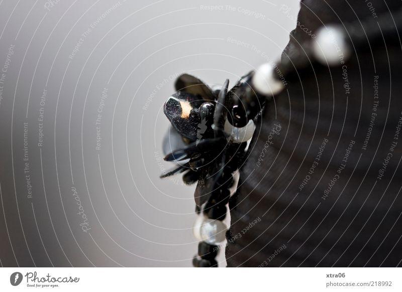 schmuck Schmuck schwarz Dekoration & Verzierung Kette Halskette Perle Gedeckte Farben Innenaufnahme Nahaufnahme Detailaufnahme Textfreiraum links