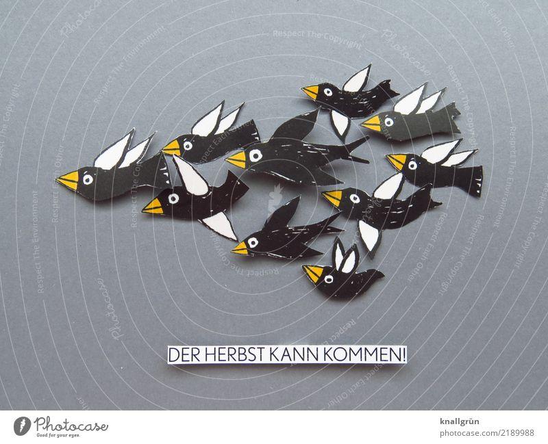 DER HERBST KANN KOMMEN! Tier Vogel Tiergruppe Schwarm Schriftzeichen Schilder & Markierungen fliegen Kommunizieren gelb grau schwarz weiß Gefühle Stimmung