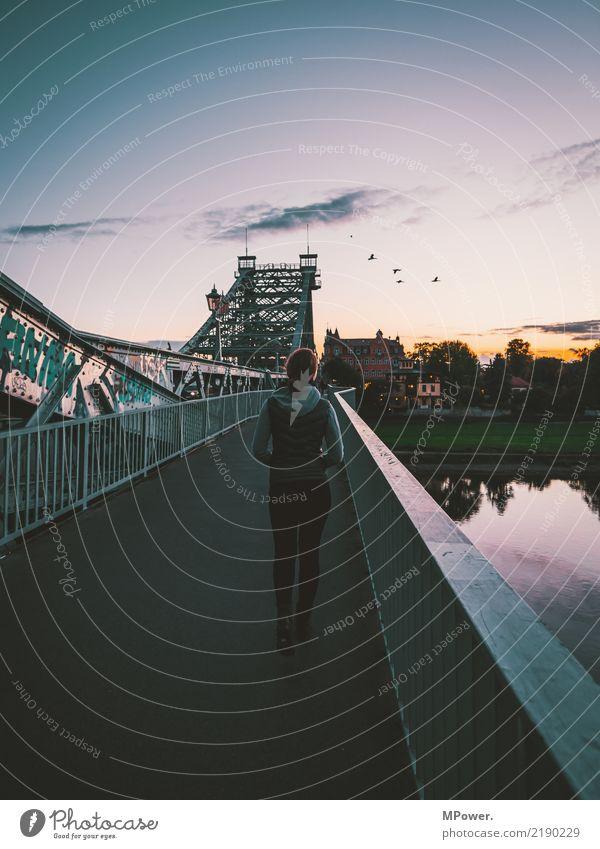 lila wolken Mensch feminin Junge Frau Jugendliche 1 18-30 Jahre Erwachsene Stadt Hauptstadt Brücke beobachten Abenddämmerung gehen Spaziergang Bürgersteig Elbe
