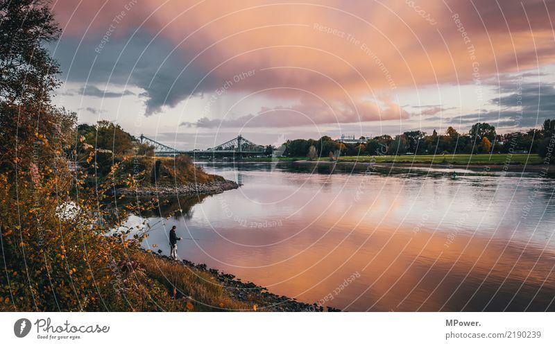 anglerhotspot Umwelt Himmel Schönes Wetter Sturm Brücke Abenteuer Abenddämmerung Angler Angeln Elbe Wolkenformation Flussufer Herbst Reflexion & Spiegelung