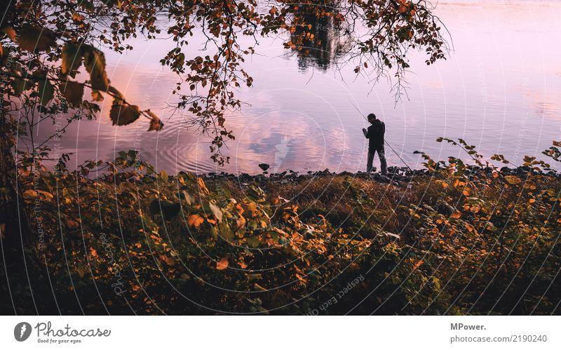 angleridylle Freizeit & Hobby Angeln Mensch maskulin 1 Umwelt Natur Schönes Wetter Gefühle Freude Angelrute Reflexion & Spiegelung Herbst Küste Elbe Flussufer