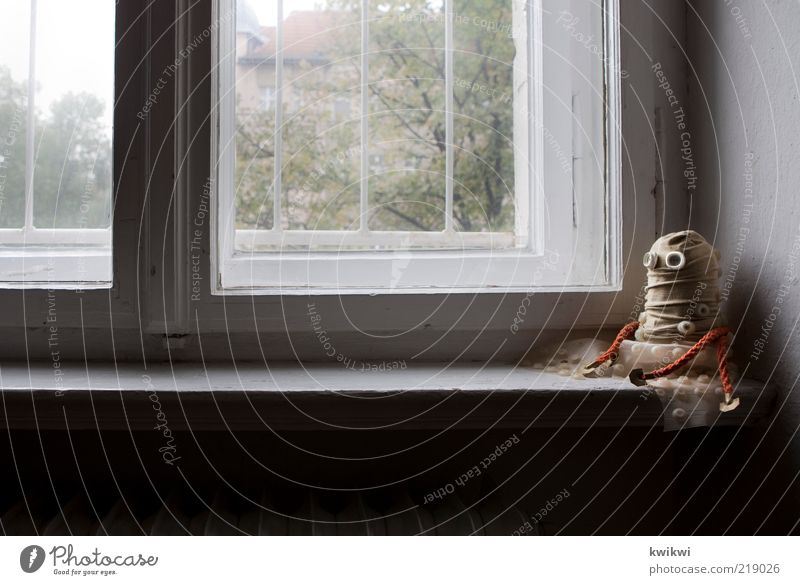 möp Baum Einsamkeit Fenster Traurigkeit Neugier Spielzeug Sehnsucht Langeweile Fernweh gefangen Gitter Heizung Qualle Fensterblick Fensterbrett selbstgemacht