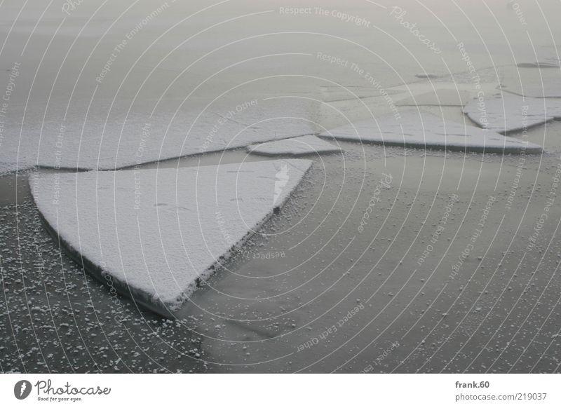 Eis Scholle Winter Natur Landschaft Wasser Nebel Schnee See Chiemsee frieren eckig kalt grau weiß Einsamkeit bizarr Frieden ruhig träumen Umwelt Farbfoto