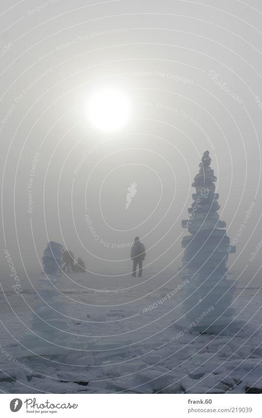 Eis Stelen Natur Landschaft Wasser Sonnenlicht Winter Wetter Nebel Frost Schnee See Chiemsee frieren stehen grau träumen Einsamkeit bizarr Endzeitstimmung