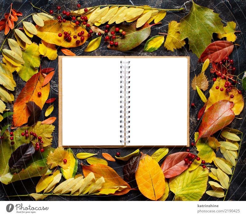 Herbstlaub und Notizbuch auf einem dunklen Hintergrund Handwerk Blatt Wald Papier dunkel hell braun gelb grün rot Farbe Borte Botanik Ast farbenfroh
