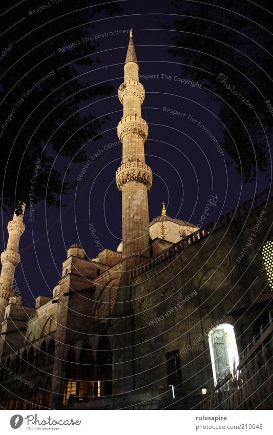 Blaue Moschee blau Ferien & Urlaub & Reisen schwarz dunkel Architektur grau Gebäude Mauer gold Fassade hoch Tourismus Turm Spitze Bauwerk Eingang