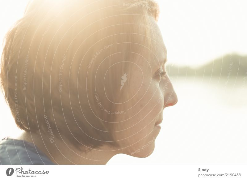 Gegenlicht feminin Junge Frau Jugendliche Erwachsene Gesicht 1 Mensch 18-30 Jahre 30-45 Jahre brünett kurzhaarig atmen träumen Ferne frei frisch Glück schön