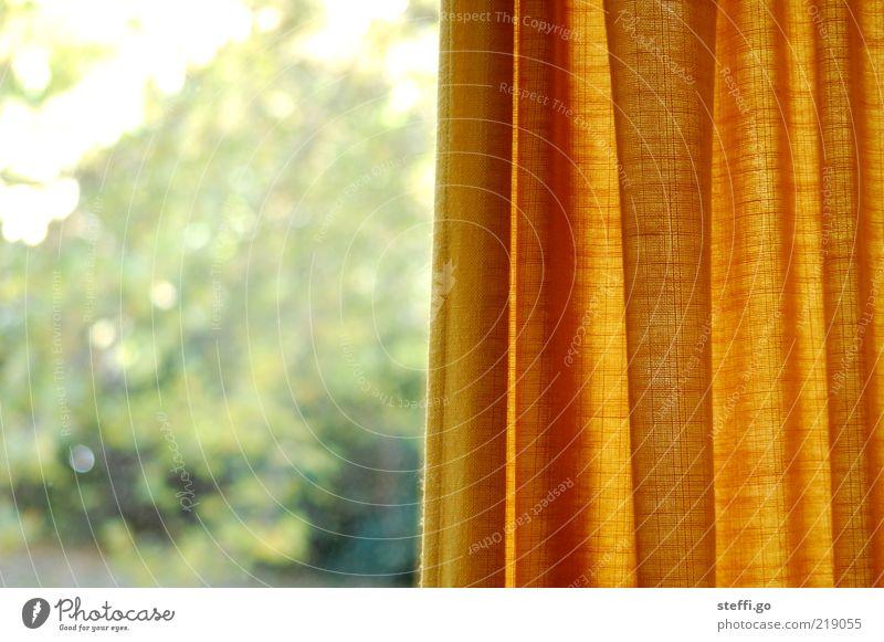 hinter schwedischen Gardinen alt gelb Fenster Innenarchitektur Wohnung Dekoration & Verzierung Aussicht beobachten retro Sicherheit Schutz Stoff Vorhang
