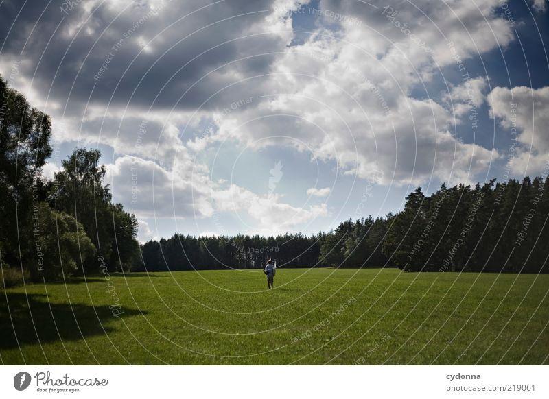 Small Mensch Mann Natur Himmel Sommer ruhig Ferne Wald Leben Erholung Wiese Bewegung Freiheit träumen Landschaft Erde