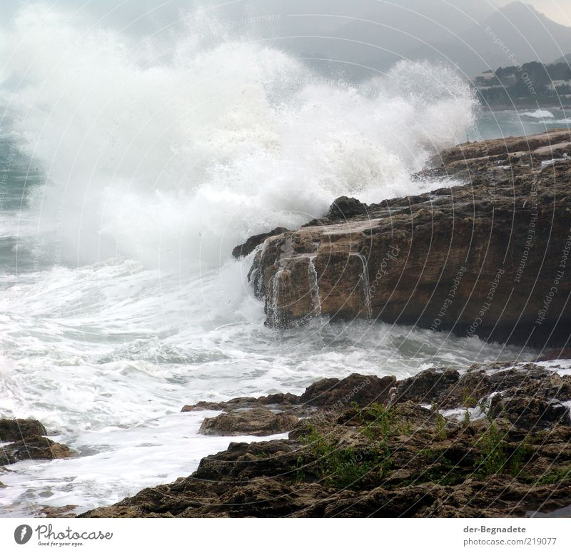 Brandung Natur Wasser Meer Küste Wellen Wetter Umwelt nass Wassertropfen Energie Felsen gefährlich bedrohlich Klima Sturm Unwetter