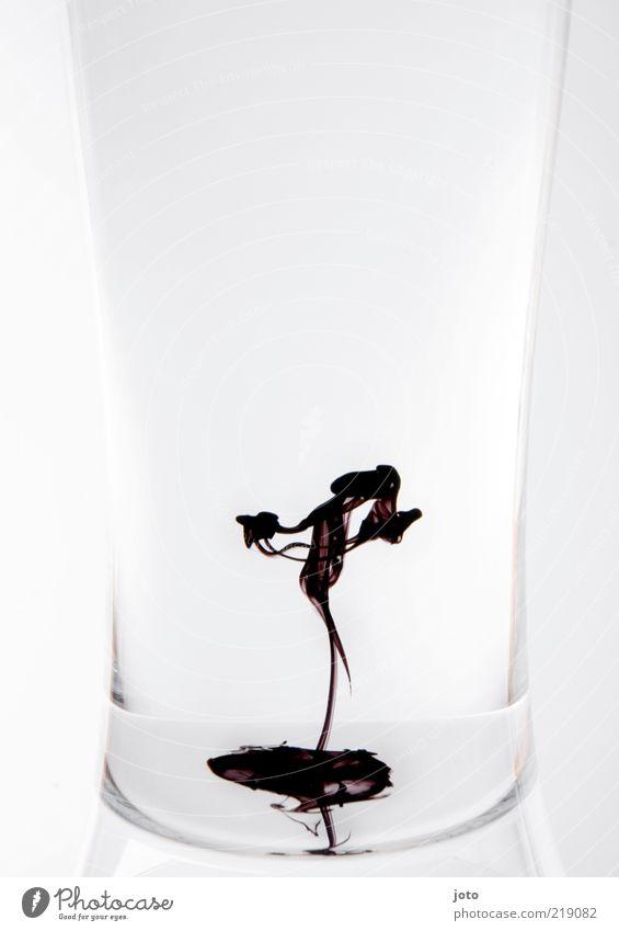 die Tänzerin Wasser schön Stil Bewegung Tanzen Kunst Glas Design elegant modern ästhetisch einzigartig Flüssigkeit Kreativität Leichtigkeit Balletttänzer