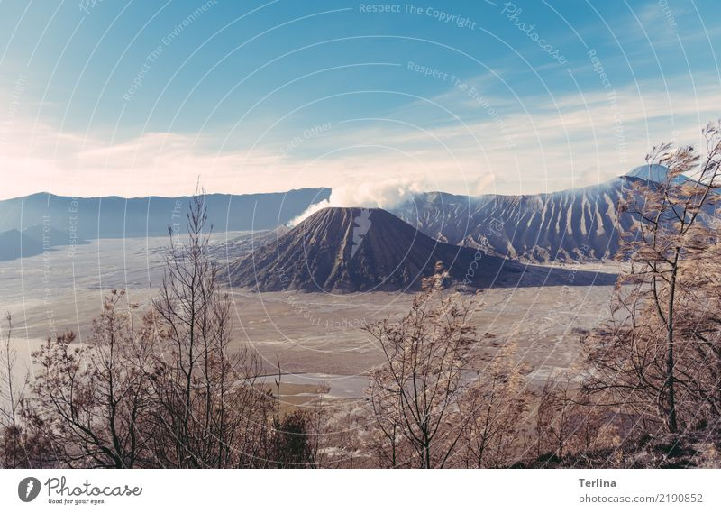 Mount Bromo Natur Landschaft Urelemente Erde Sand Sommer Schönes Wetter Sträucher Wüste Vulkan Vulkankrater beobachten Blick wandern authentisch bedrohlich