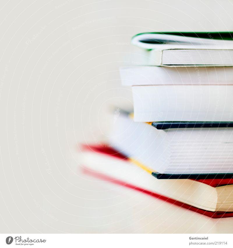 Lesestoff Buch lernen Studium Bildung Printmedien Medien Stapel Wissen Freisteller Textfreiraum links Leseratte