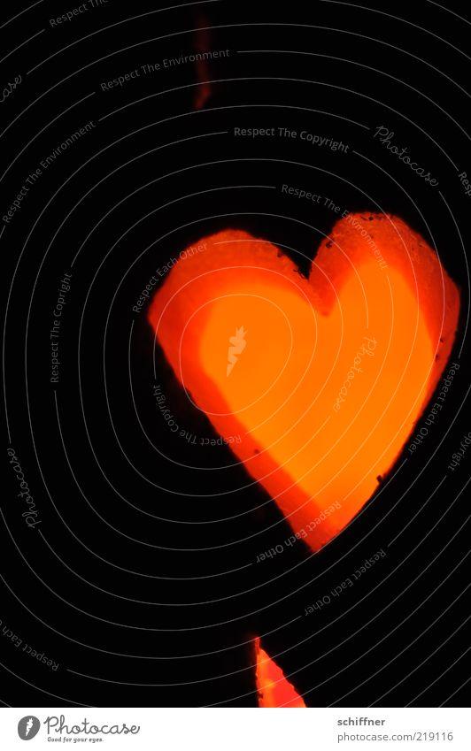 400 - me love pc - und Erwin rot Liebe schwarz dunkel Beleuchtung orange Herz Zeichen leuchten Freundlichkeit Liebeskummer Halloween Kürbis herzlich Kerzenschein Licht