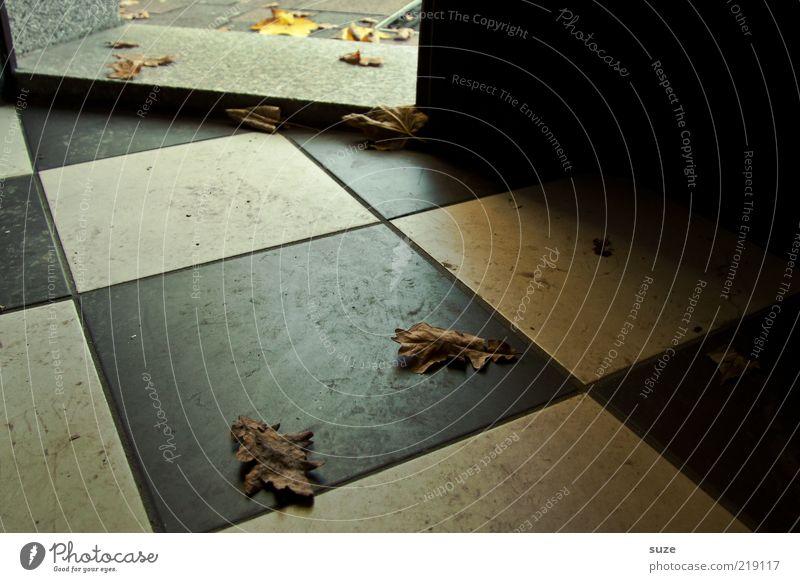 Willkommen weiß Blatt schwarz Haus Herbst Tür dreckig Bodenbelag trist trocken Fliesen u. Kacheln Eingang Herbstlaub kariert Flur herbstlich