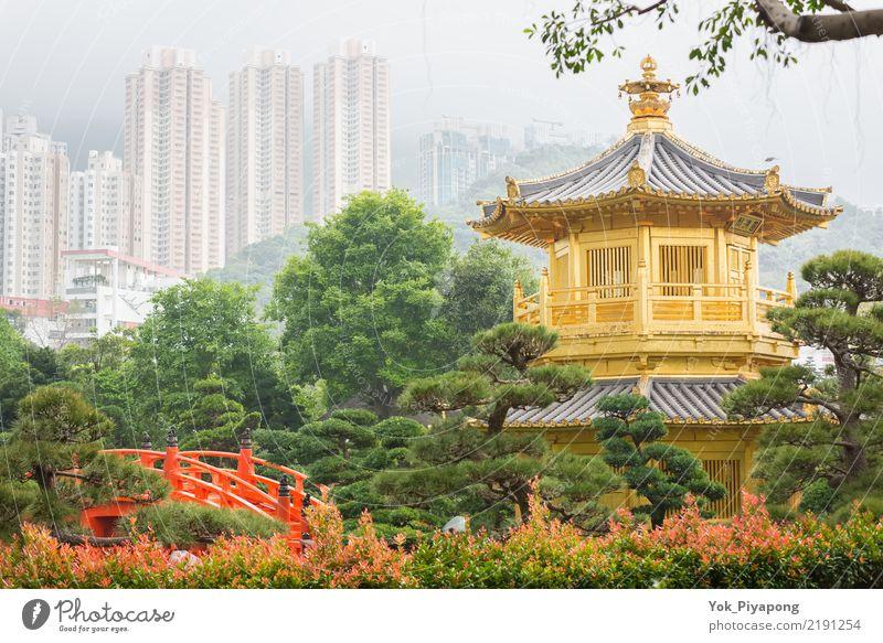 Nan Lian Garden in Hong Kong. Stil Ferien & Urlaub & Reisen Tourismus Sommer Garten Landschaft Park See Brücke Gebäude Architektur historisch blau gold grün rot