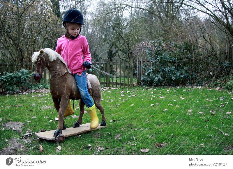 Galopper des Jahres Natur Mädchen grün Freude Tier gelb Wiese Herbst Spielen Garten rosa Pferd Rasen Freizeit & Hobby Kindheit