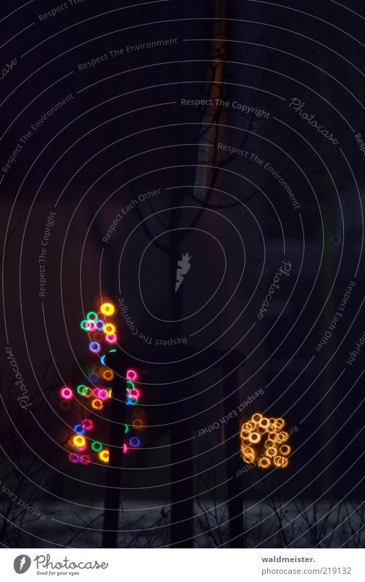 Weihnachtsbäumchen Baum glänzend dunkel blau gelb gold grün violett rosa schwarz Fröhlichkeit Vorfreude ästhetisch kalt Weihnachtsbaum Lichterkette