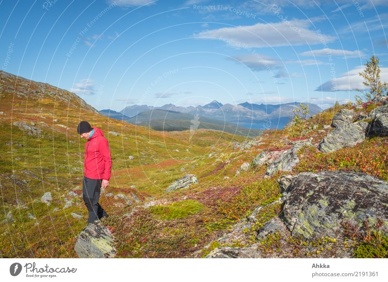 Schönwetterspaziergang Himmel Natur Ferien & Urlaub & Reisen Jugendliche Junger Mann Landschaft Berge u. Gebirge Herbst Wege & Pfade Bewegung Felsen Ausflug