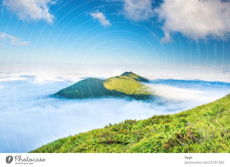 Grüne Berge in den Wolken schön Ferien & Urlaub & Reisen Tourismus Ferne Sommer Sonne Berge u. Gebirge Natur Landschaft Himmel Nebel Gras Hügel natürlich blau