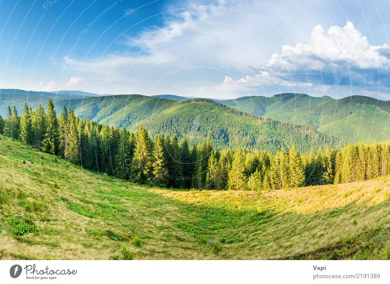 Panorama mit grünen Bergen Himmel Natur Ferien & Urlaub & Reisen Pflanze blau Sommer schön weiß Baum Landschaft Wolken Wald Berge u. Gebirge gelb Umwelt