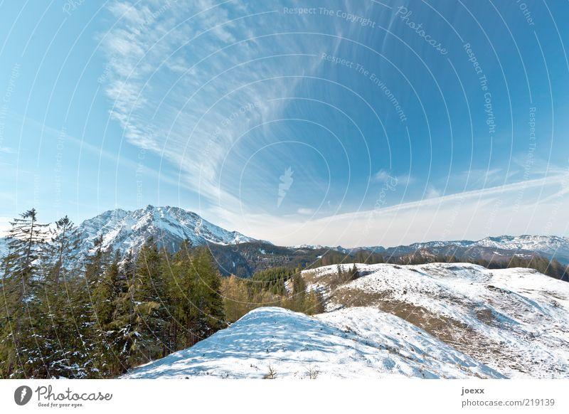 Erster Schnee Natur Landschaft Himmel Winter Wetter Schönes Wetter Alpen Berge u. Gebirge Gipfel Schneebedeckte Gipfel groß hoch blau grün weiß ruhig Freiheit