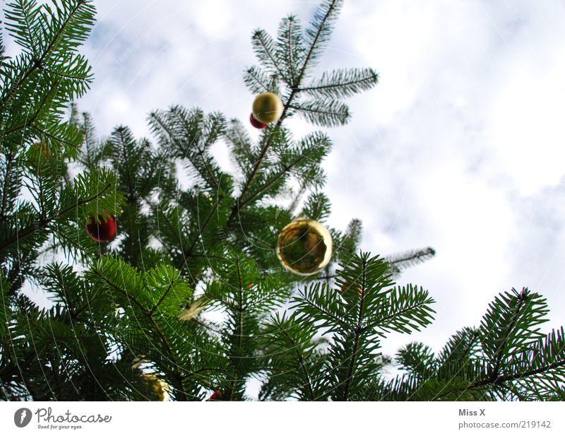 Weihnachtsbäum Weihnachten & Advent Himmel Wolken glänzend hoch Weihnachtsbaum Dekoration & Verzierung Kugel Christbaumkugel hängen Weihnachtsdekoration