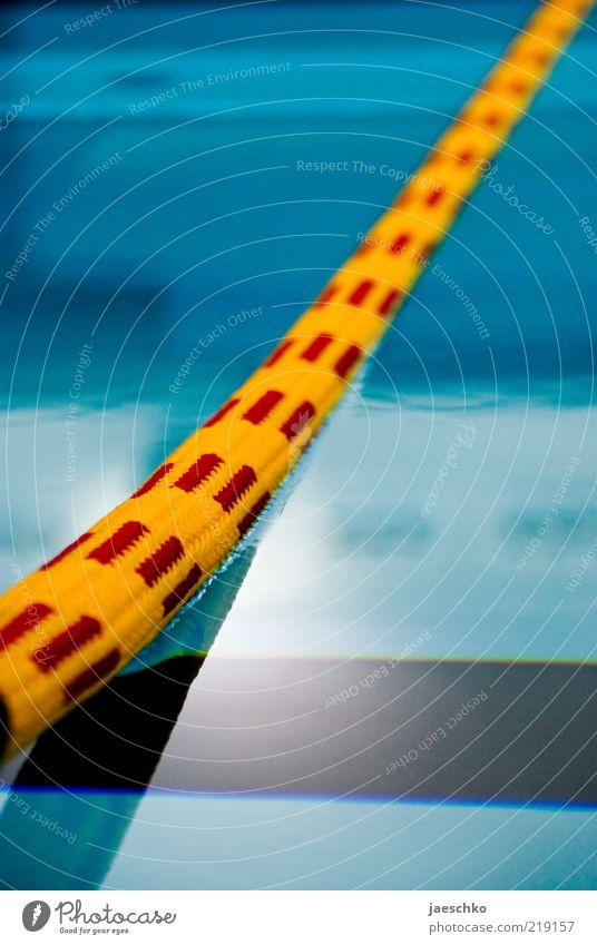 Wassersport blau Wasser rot ruhig gelb Linie Schwimmen & Baden Perspektive Seil Schwimmbad Schwimmsport Tiefenschärfe Barriere Schweben Wasseroberfläche Bahn