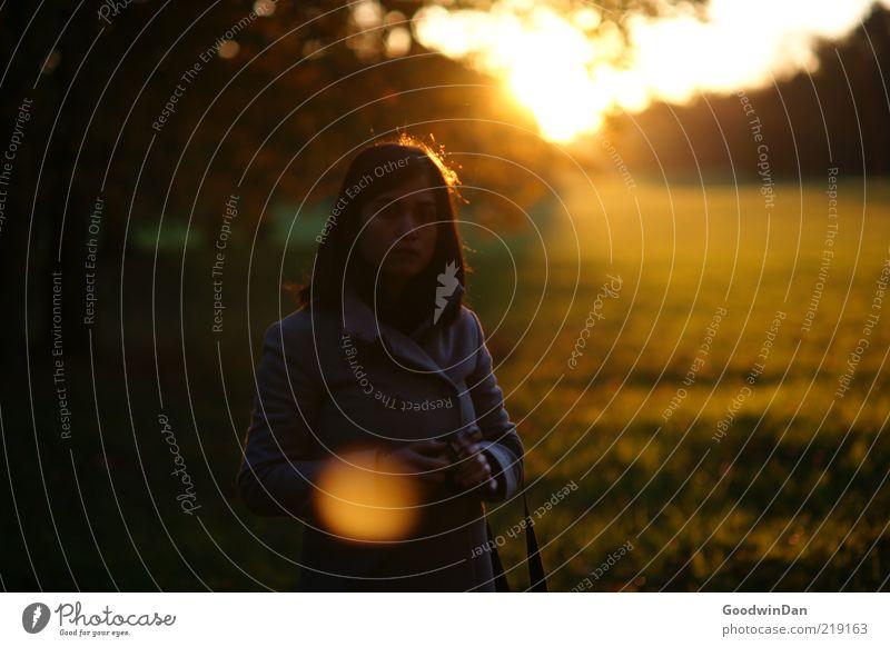Licht. II Mensch feminin Junge Frau Jugendliche Erwachsene Leben 1 Umwelt Natur Baum Gras Wiese atmen warten kalt Gefühle Stimmung frei Herbst Ferne schön