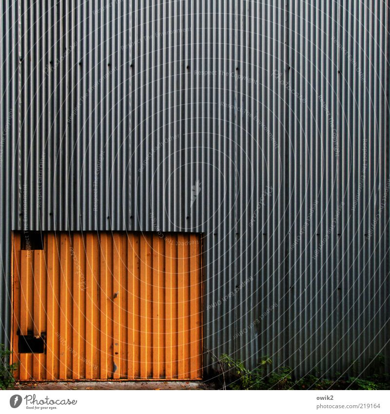 Out of Charleroi alt Pflanze Farbe grau Gebäude orange Metall Architektur Tür Design geschlossen trist Sträucher einfach Tor Bauwerk
