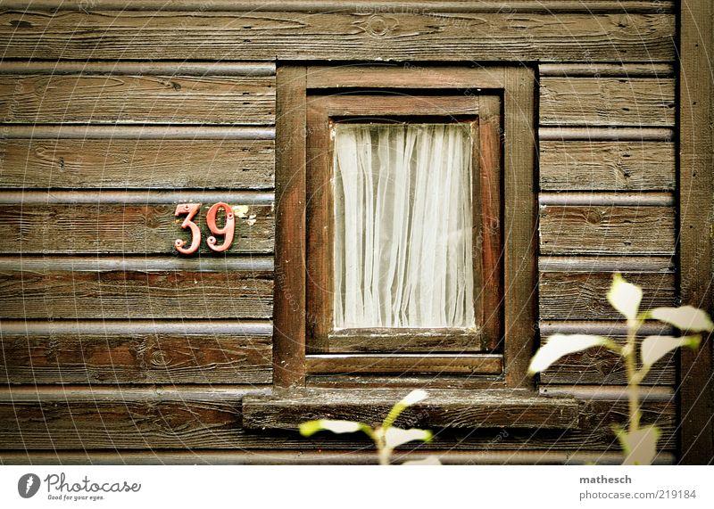Kleinstadtidylle Pflanze Haus Einsamkeit Wand Fenster Holz Mauer Gebäude braun klein Glas Fassade geschlossen einfach Häusliches Leben Warmherzigkeit
