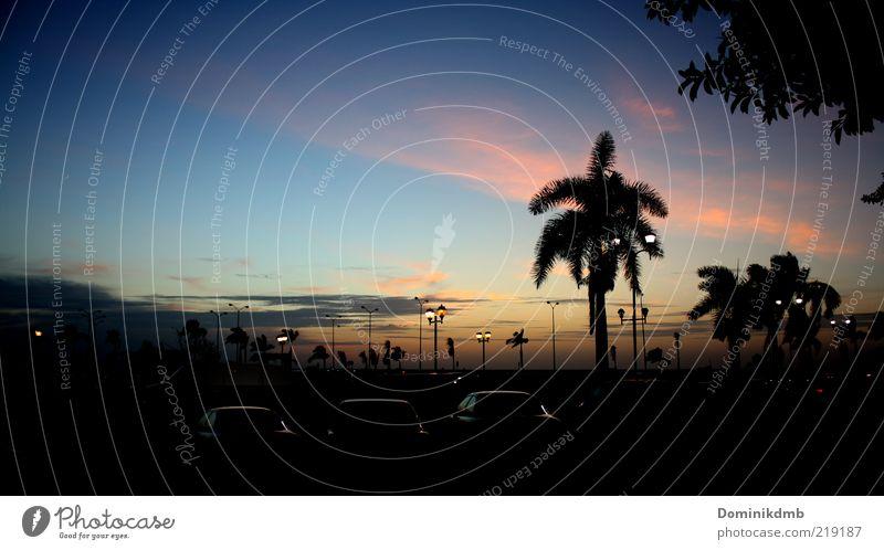 Dämmerung Natur Himmel Sommer Ferien & Urlaub & Reisen ruhig Wolken dunkel Freiheit PKW Horizont Lifestyle Romantik Klima Nachthimmel natürlich leuchten