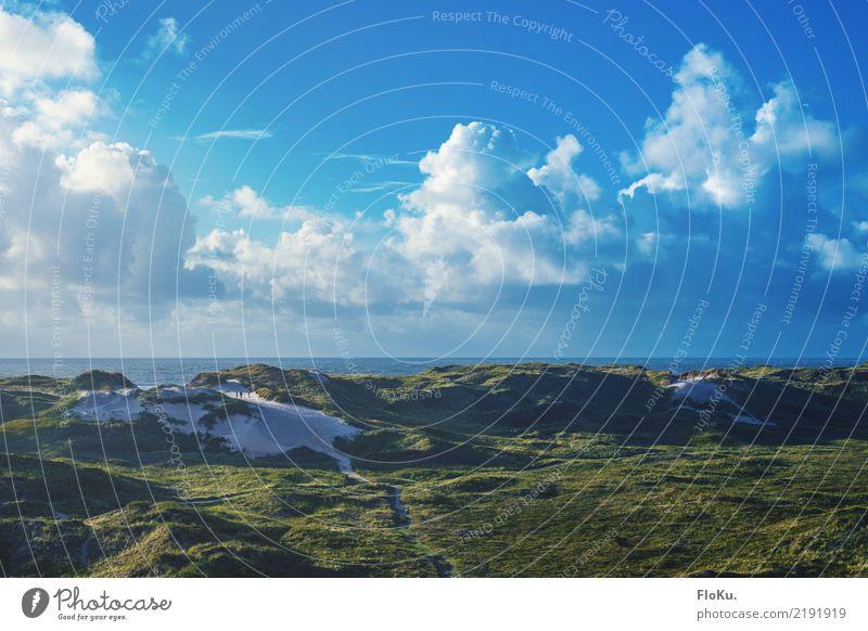 Grüne Dünen in Dänemark Himmel Natur Ferien & Urlaub & Reisen blau Sommer Wasser Sonne Landschaft Meer Wolken Strand Umwelt natürlich Küste Tourismus Stimmung