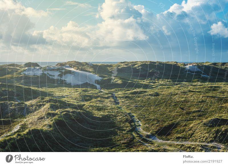 Dünen in Dänemark Ferien & Urlaub & Reisen Tourismus Ferne Strand Umwelt Natur Landschaft Urelemente Sand Wasser Himmel Wolken Horizont Sonne Sonnenlicht Sommer