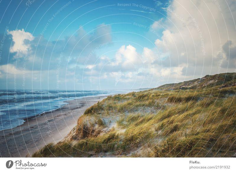 Nrdseeküste Dänemark Ferien & Urlaub & Reisen Tourismus Ferne Sommer Sommerurlaub Umwelt Natur Landschaft Urelemente Sand Luft Wasser Himmel Wolken Sonne