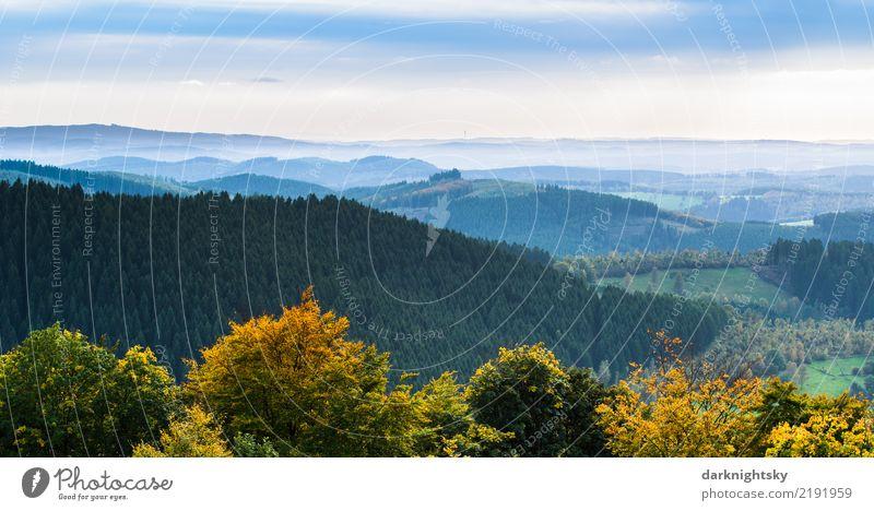 Panorama Siegerland und Wittgenstein von der Ginsberger Heide Natur Ferien & Urlaub & Reisen Pflanze blau Sommer grün weiß Baum Landschaft Wald Berge u. Gebirge