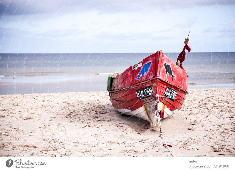 liegeplatz. Stil Sommer Strand Meer Segeln Arbeitsplatz Landschaft Urelemente Sand Wasser Horizont Küste Ostsee Verkehrsmittel Schifffahrt Bootsfahrt