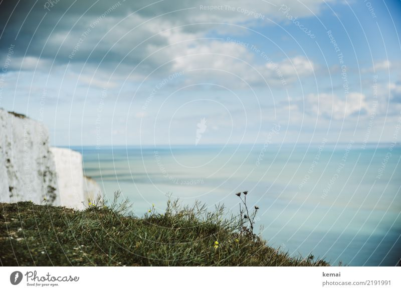 Blau-weiß Himmel Natur Ferien & Urlaub & Reisen Sommer schön Wasser Landschaft Meer Erholung Wolken ruhig Ferne Wärme Gras Tourismus Freiheit