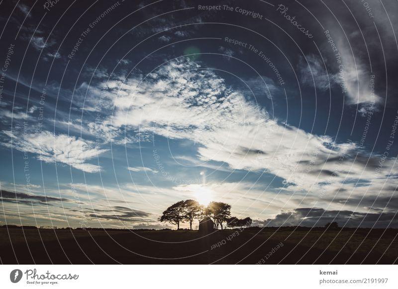 Am Ende des Tages Himmel Ferien & Urlaub & Reisen Landschaft Baum Erholung Wolken ruhig Ferne dunkel Wärme Freiheit Ausflug Zufriedenheit Freizeit & Hobby Feld